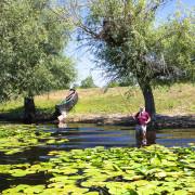 Danube Delta Locals