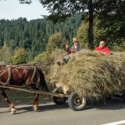People of Bukovina