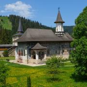 Sucevita painted church