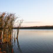 Tour Danube Delta