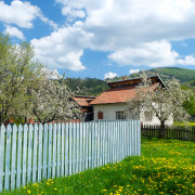 Village of Bukovina