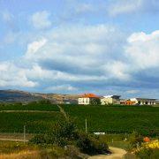 Wine tour Romania