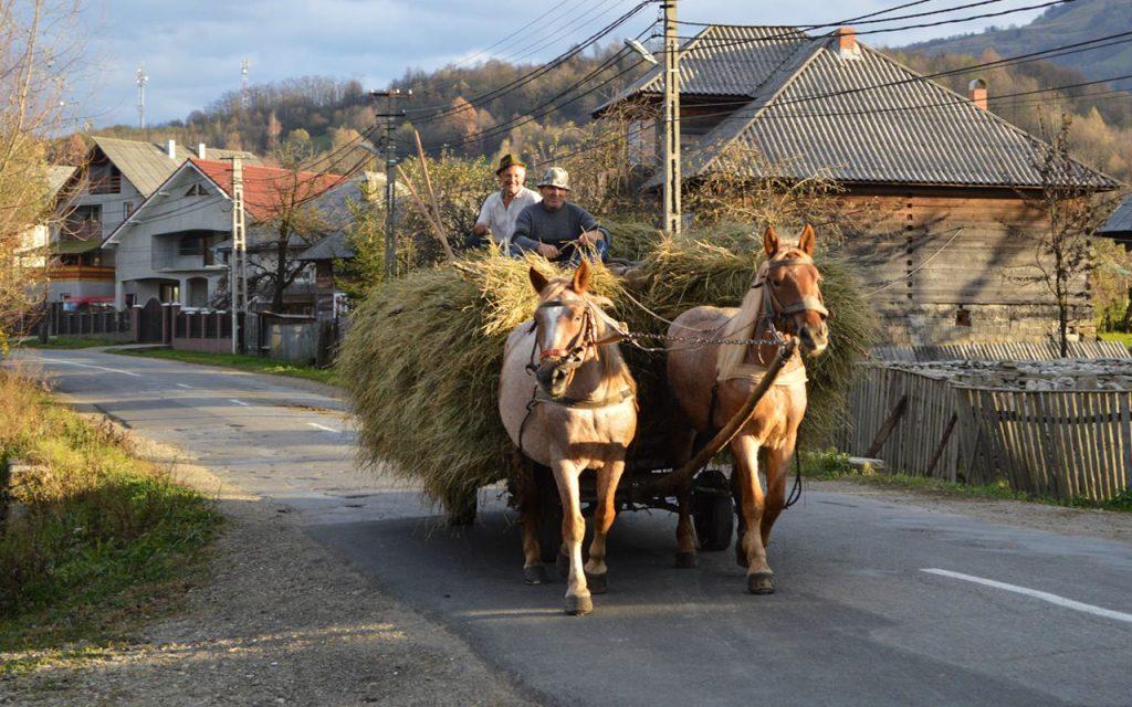 Maramures Region Romania
