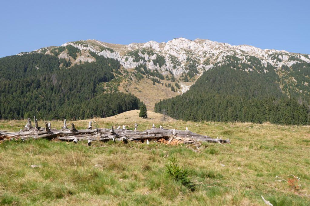 Hiking Piatra Craiului