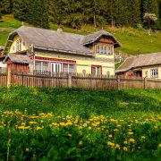 Bukovina Region