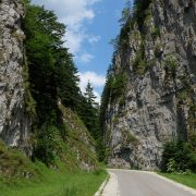 dambovicioara-gorge