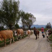 romania-villages