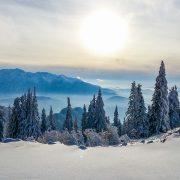 winter-carpathians