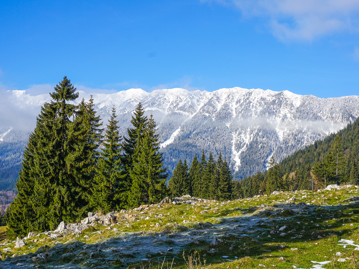carpathian mountains winter hiking tour romania tour store