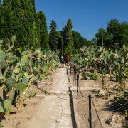 balchik-gardens